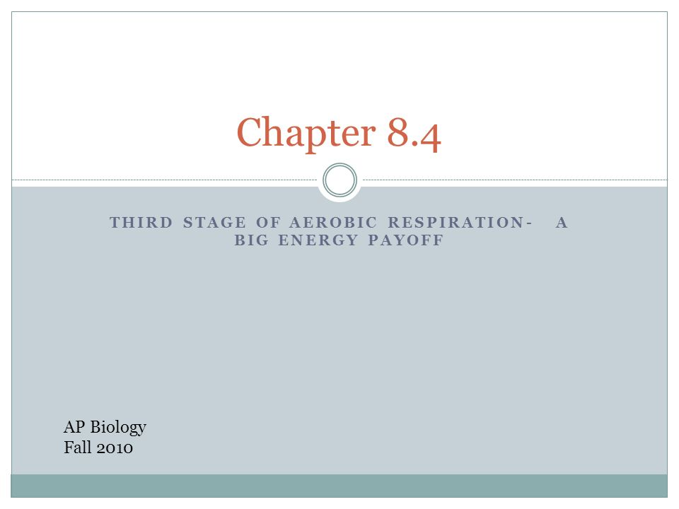 THIRD STAGE OF AEROBIC RESPIRATION- A BIG ENERGY PAYOFF Chapter 8.4 AP Biology Fall 2010