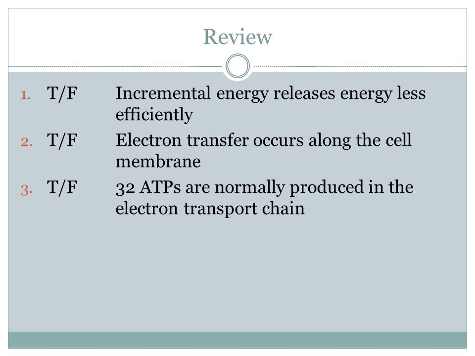 Review 1. T/FIncremental energy releases energy less efficiently 2. T/FElectron transfer occurs along the cell membrane 3. T/F32 ATPs are normally pro