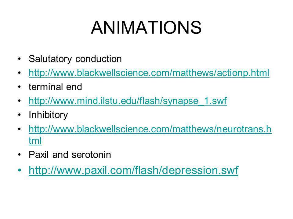 ANIMATIONS Salutatory conduction http://www.blackwellscience.com/matthews/actionp.html terminal end http://www.mind.ilstu.edu/flash/synapse_1.swf Inhi