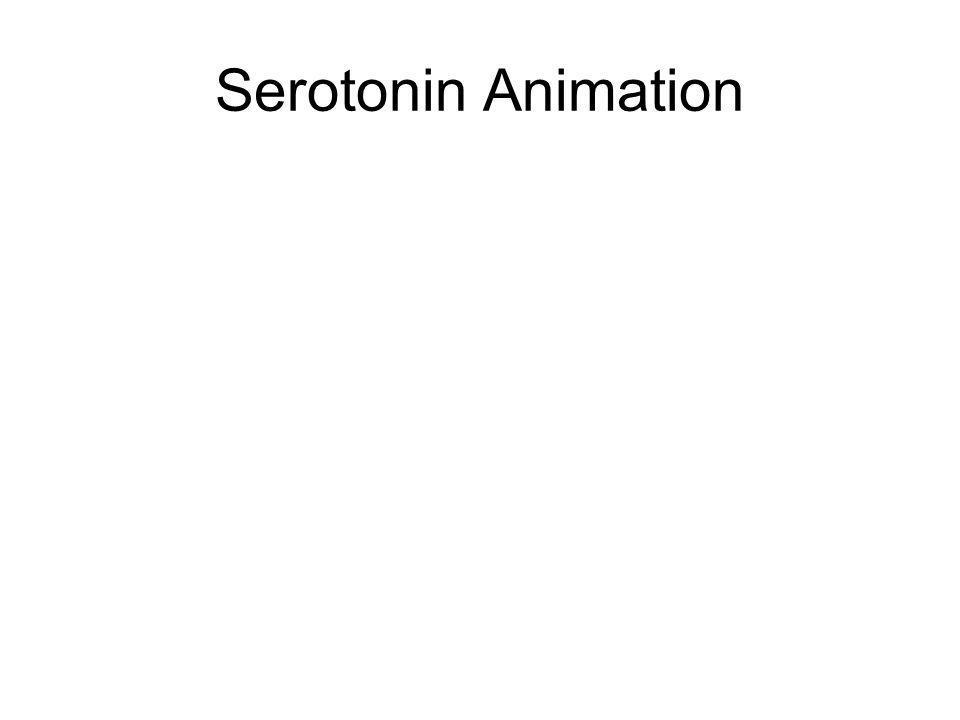 Serotonin Animation