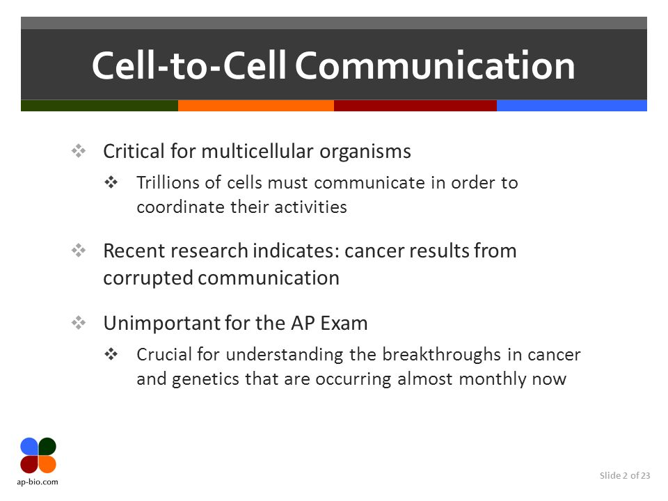 Slide 2 of 23 Cell-to-Cell Communication Critical for multicellular organisms Trillions of cells must communicate in order to coordinate their activit