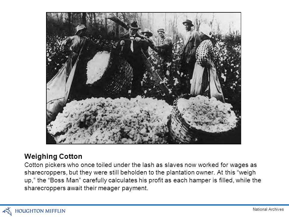 Cotton pickers who once toiled under the lash as slaves now worked for wages as sharecroppers, but they were still beholden to the plantation owner. A
