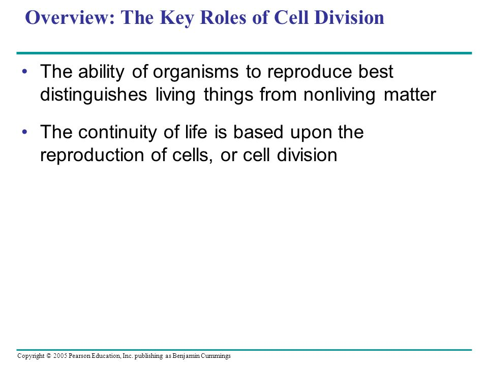 Copyright © 2005 Pearson Education, Inc. publishing as Benjamin Cummings Overview: The Key Roles of Cell Division The ability of organisms to reproduc