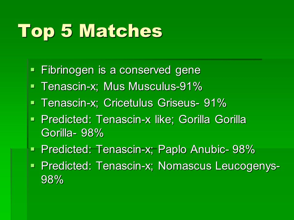 Top 5 Matches (cont.)