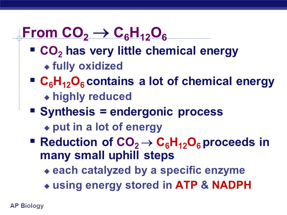 AP Biology How is that helpful? Want to make C 6 H 12 O 6 synthesis How? From what? What raw materials are available? CO 2 C 6 H 12 O 6 NADPH NADP red
