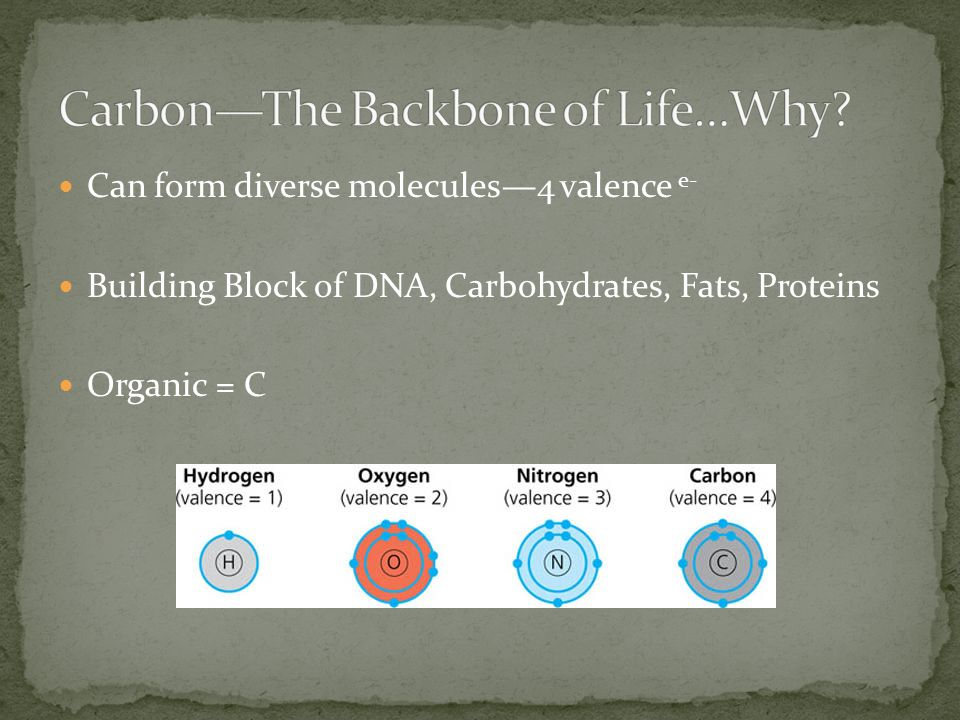 Can form diverse molecules4 valence e- Building Block of DNA, Carbohydrates, Fats, Proteins Organic = C