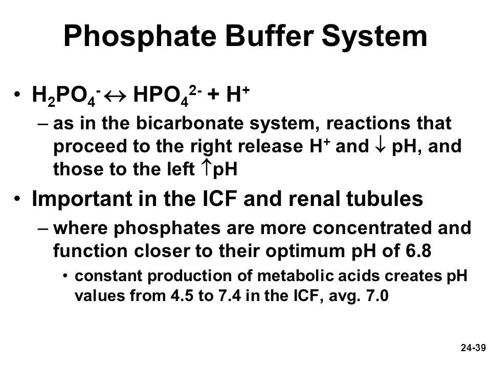 24-39 Phosphate Buffer System H 2 PO 4 - HPO 4 2- + H + –as in the bicarbonate system, reactions that proceed to the right release H + and pH, and tho