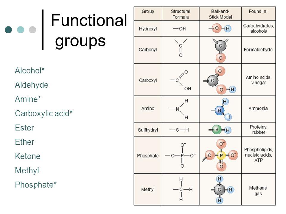 Functional groups Alcohol* Aldehyde Amine* Carboxylic acid* Ester Ether Ketone Methyl Phosphate*