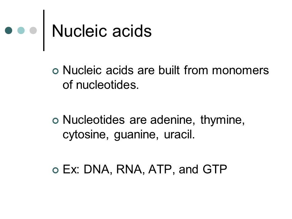 Nucleic acids Nucleic acids are built from monomers of nucleotides. Nucleotides are adenine, thymine, cytosine, guanine, uracil. Ex: DNA, RNA, ATP, an