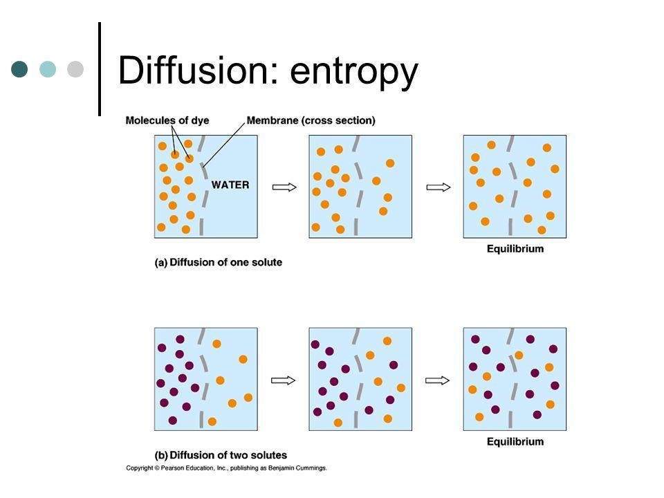 Diffusion: entropy