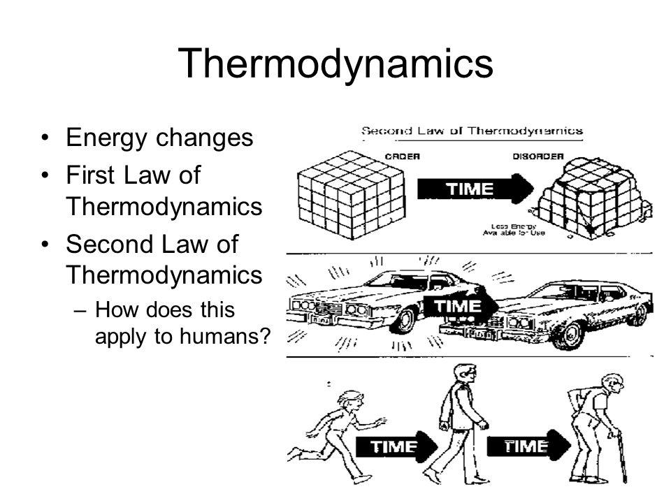 Metabolism Anabolic- use energy Catabolic- need energy Biochemical Pathways –Evolution of BPs