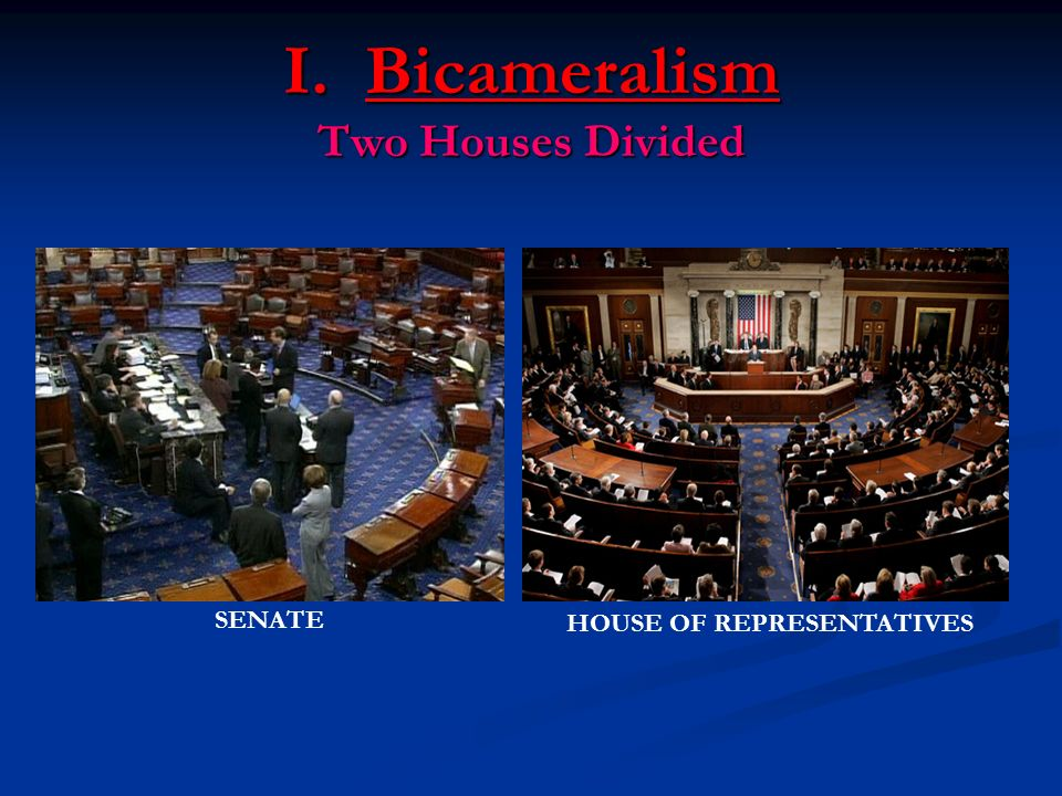 I. Bicameralism Two Houses Divided SENATE HOUSE OF REPRESENTATIVES
