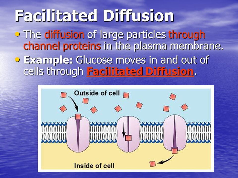 Facilitated Diffusion The diffusion of large particles through channel proteins in the plasma membrane. The diffusion of large particles through chann