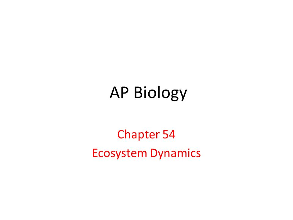 AP Biology Chapter 54 Ecosystem Dynamics
