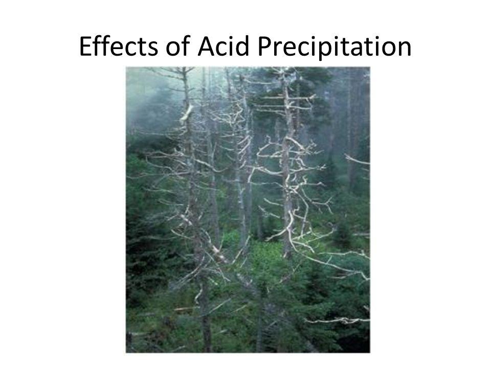 Effects of Acid Precipitation