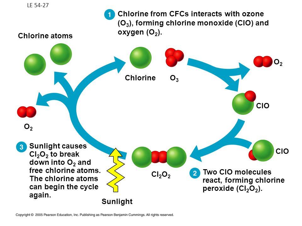 LE 54-27 Chlorine atoms O3O3 Chlorine Cl 2 O 2 CIO O2O2 O2O2 Chlorine from CFCs interacts with ozone (O 3 ), forming chlorine monoxide (CIO) and oxyge