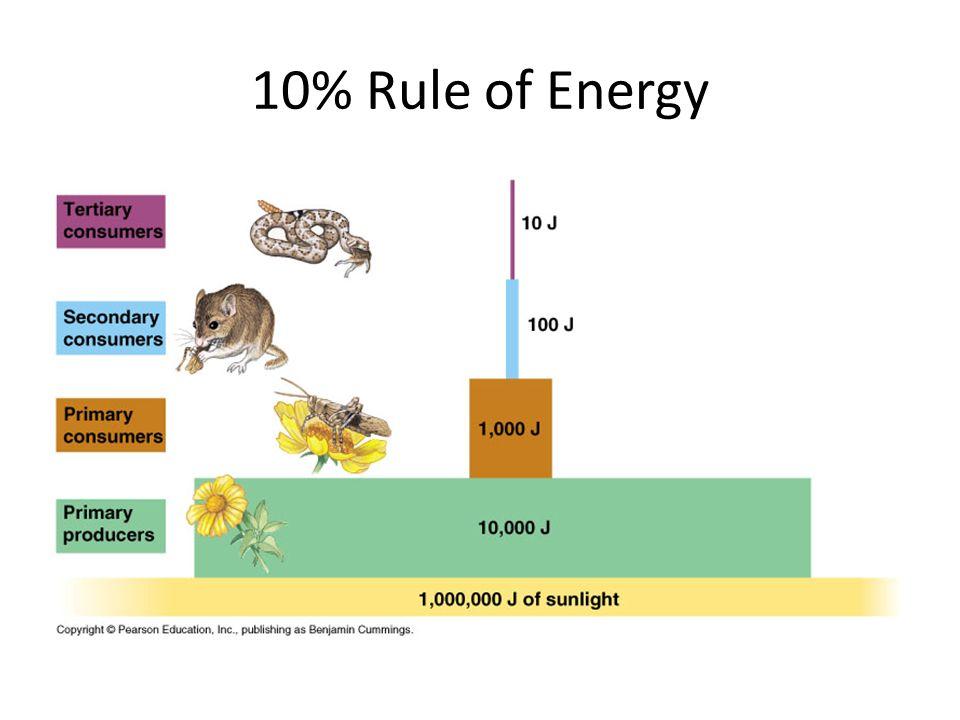 10% Rule of Energy