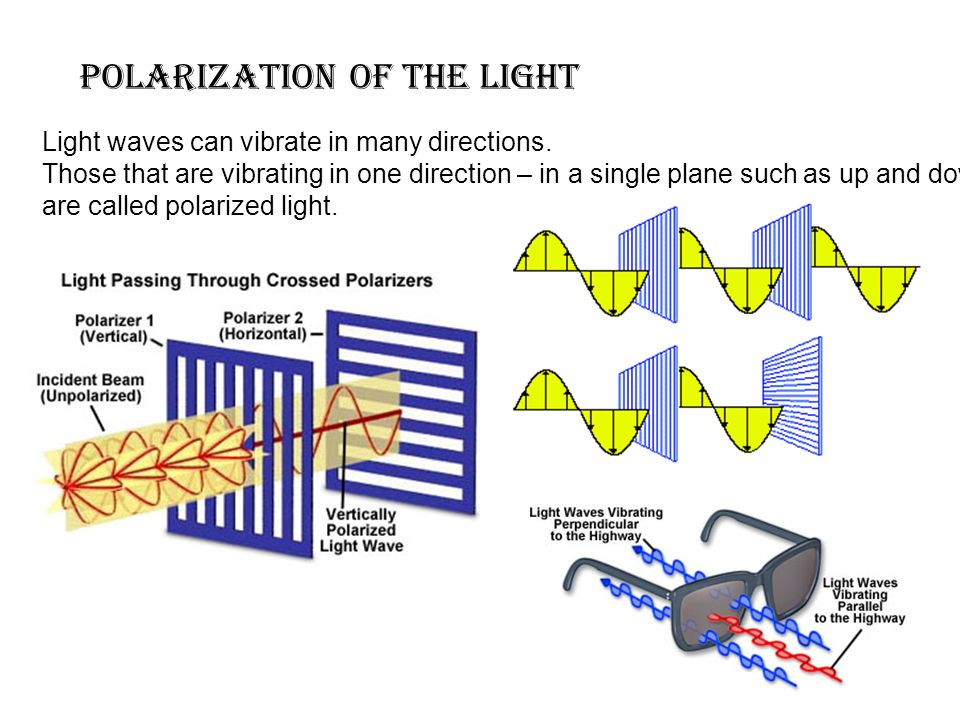 polarization of the light Light waves can vibrate in many directions.
