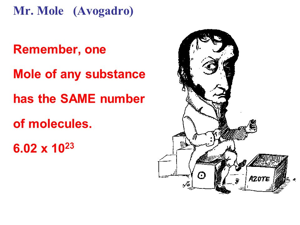 Mr. Mole (Avogadro) Remember, one Mole of any substance has the SAME number of molecules. 6.02 x 10 23