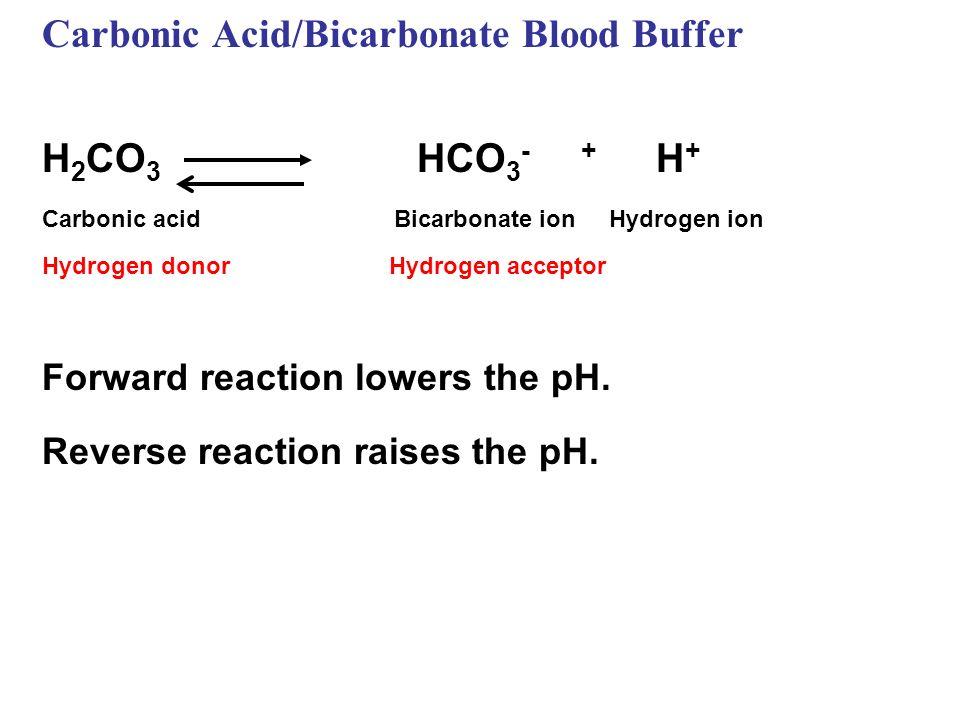 Carbonic Acid/Bicarbonate Blood Buffer H 2 CO 3 HCO 3 - + H + Carbonic acid Bicarbonate ion Hydrogen ion Hydrogen donor Hydrogen acceptor Forward reac