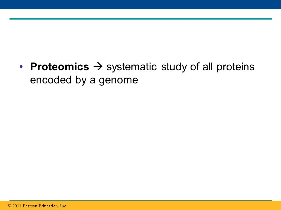 Copyright © 2005 Pearson Education, Inc. publishing as Benjamin Cummings Proteomics systematic study of all proteins encoded by a genome © 2011 Pearso