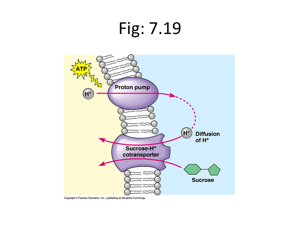 Fig: 7.19