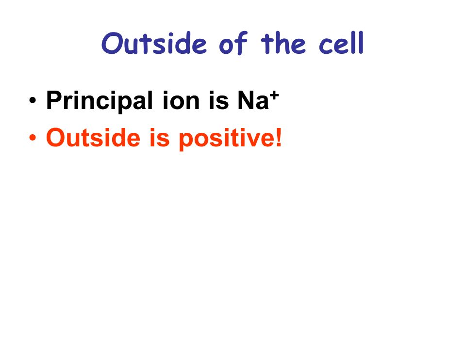 Outside of the cell Principal ion is Na + Outside is positive!