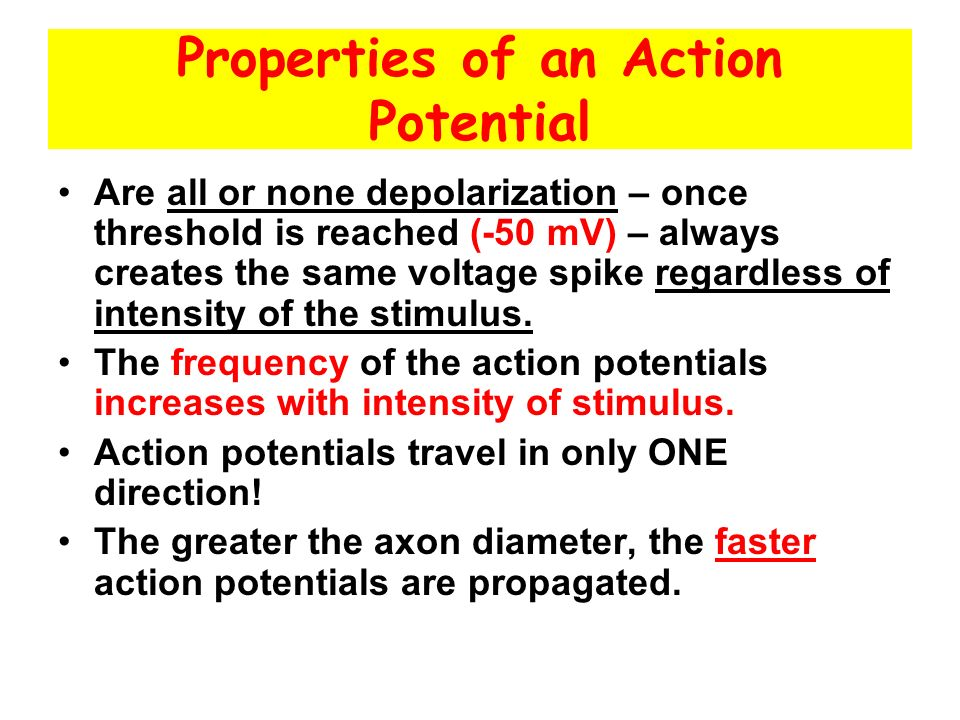 Properties of an Action Potential Are all or none depolarization – once threshold is reached (-50 mV) – always creates the same voltage spike regardless of intensity of the stimulus.