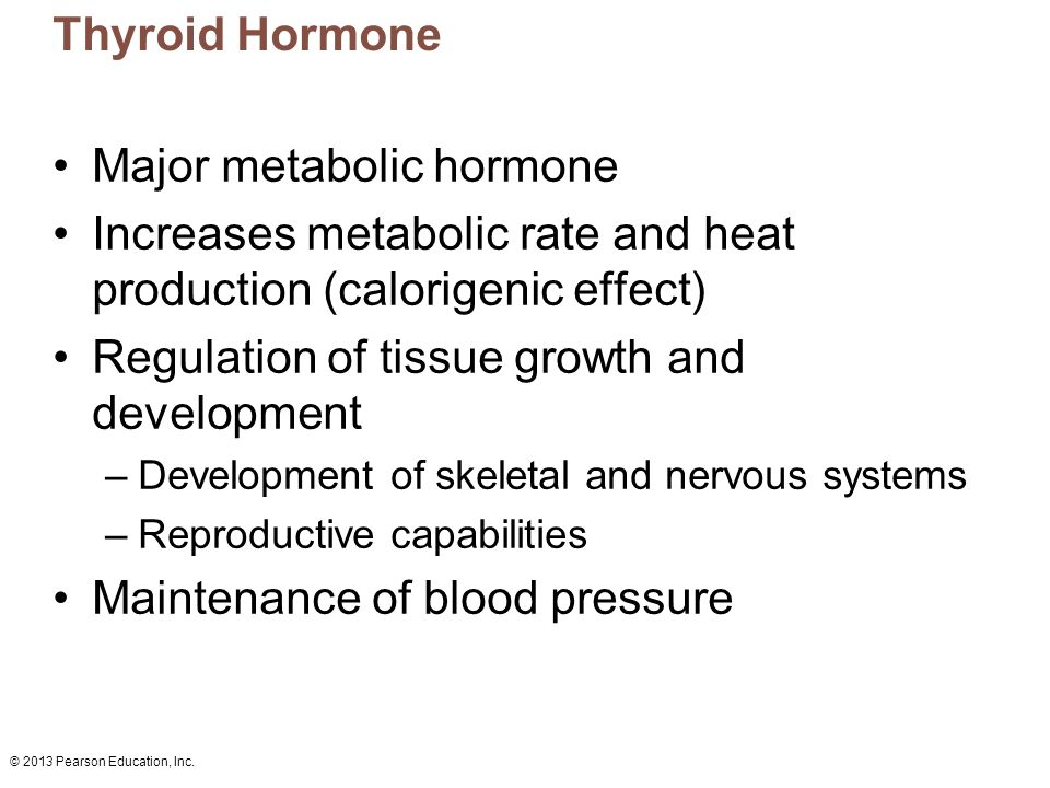 © 2013 Pearson Education, Inc. Thyroid Hormone Major metabolic hormone Increases metabolic rate and heat production (calorigenic effect) Regulation of