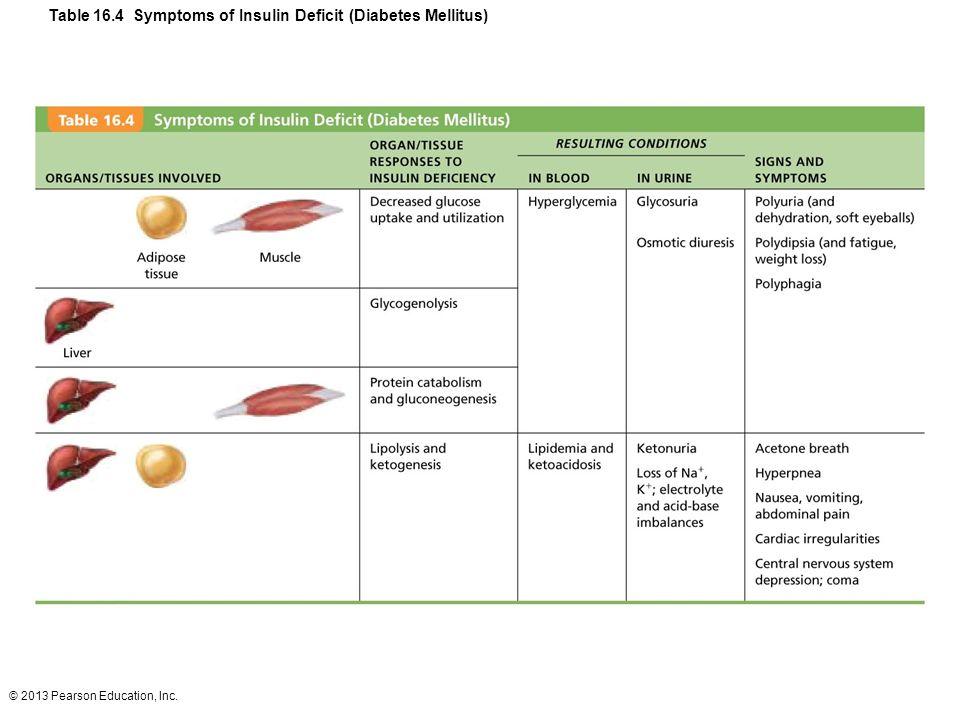© 2013 Pearson Education, Inc. Table 16.4 Symptoms of Insulin Deficit (Diabetes Mellitus)