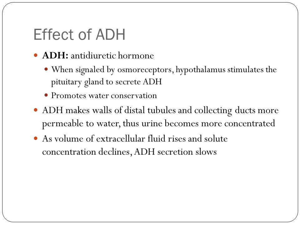 Effect of ADH ADH: antidiuretic hormone When signaled by osmoreceptors, hypothalamus stimulates the pituitary gland to secrete ADH Promotes water cons