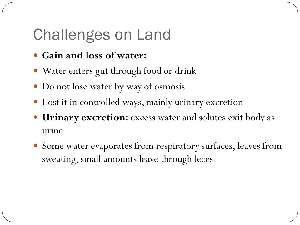 Challenges on Land Gain and loss of solutes: Absorption of nutrients from gut, secretions from cells, and release of carbon dioxide wastes adds solutes; air intake from lungs adds oxygen Loose solutes mainly in sweat, respiration, and urinary excretion All exhale carbon dioxide Urea: ammonia, toxic by product of protein metabolism is converted to urea, which is then excreted in urine
