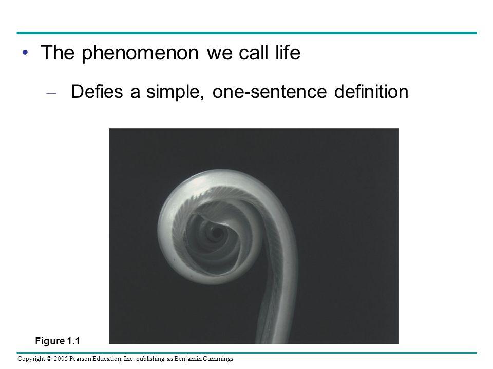 Copyright © 2005 Pearson Education, Inc.
