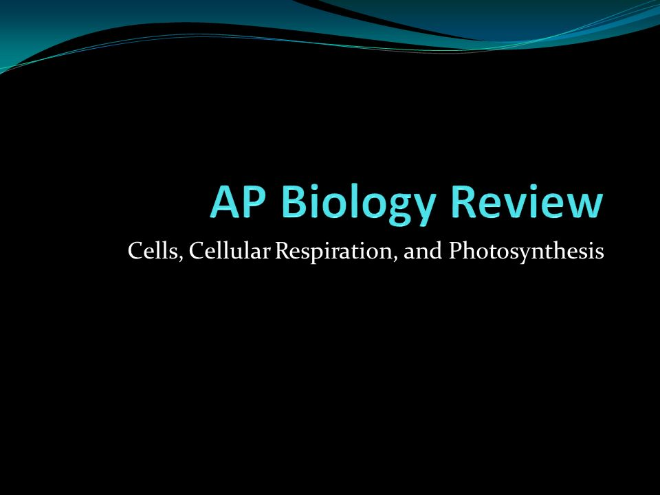 Cells, Cellular Respiration, and Photosynthesis