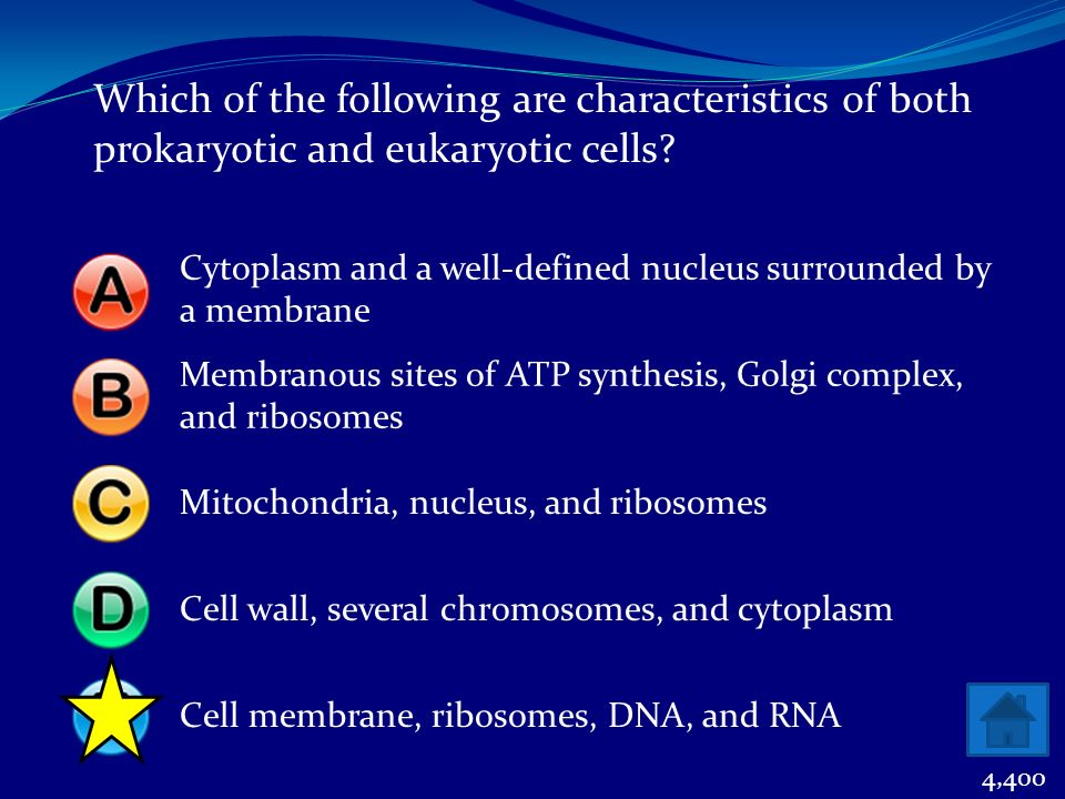 Which of the following are characteristics of both prokaryotic and eukaryotic cells? Cytoplasm and a well-defined nucleus surrounded by a membrane Mem