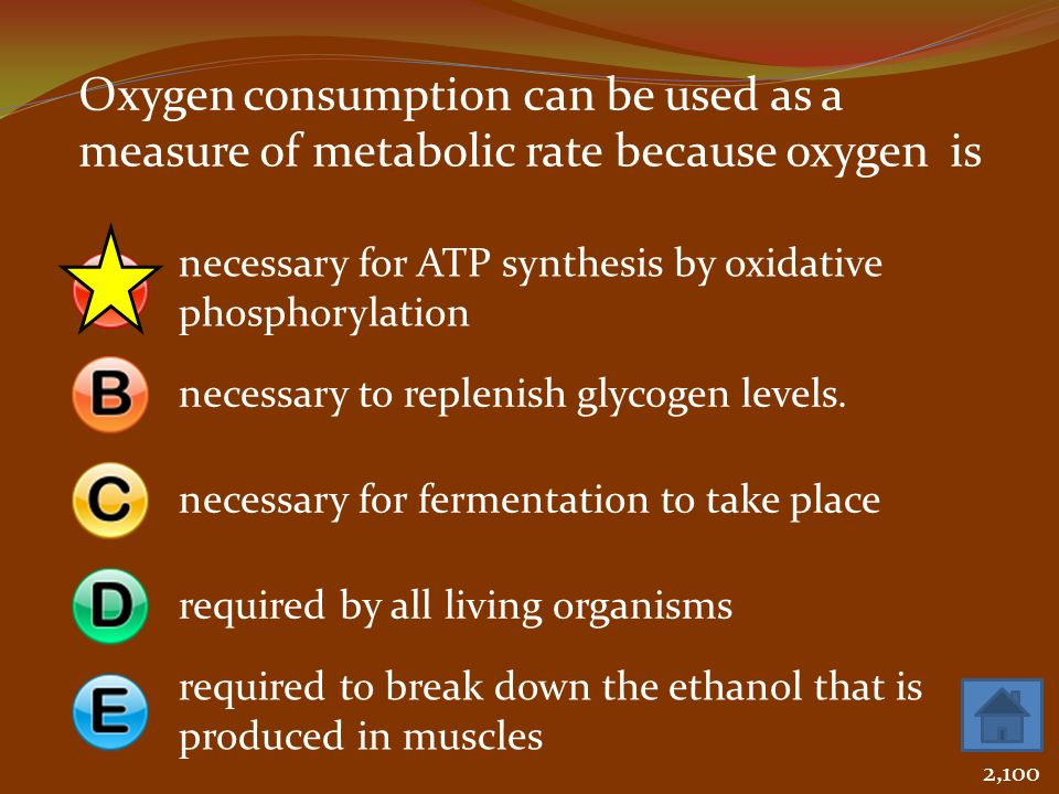 Oxygen consumption can be used as a measure of metabolic rate because oxygen is necessary for ATP synthesis by oxidative phosphorylation necessary to