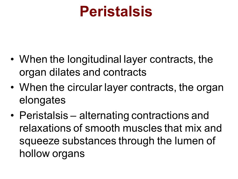 Peristalsis When the longitudinal layer contracts, the organ dilates and contracts When the circular layer contracts, the organ elongates Peristalsis