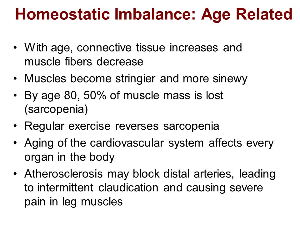 Homeostatic Imbalance: Age Related With age, connective tissue increases and muscle fibers decrease Muscles become stringier and more sinewy By age 80