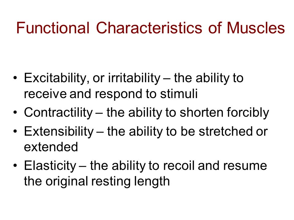 Functional Characteristics of Muscles Excitability, or irritability – the ability to receive and respond to stimuli Contractility – the ability to sho