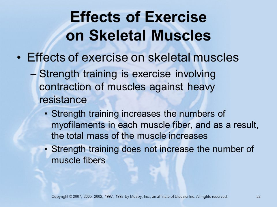 Copyright © 2007, 2005, 2002, 1997, 1992 by Mosby, Inc., an affiliate of Elsevier Inc. All rights reserved. 31 Effects of Exercise on Skeletal Muscles