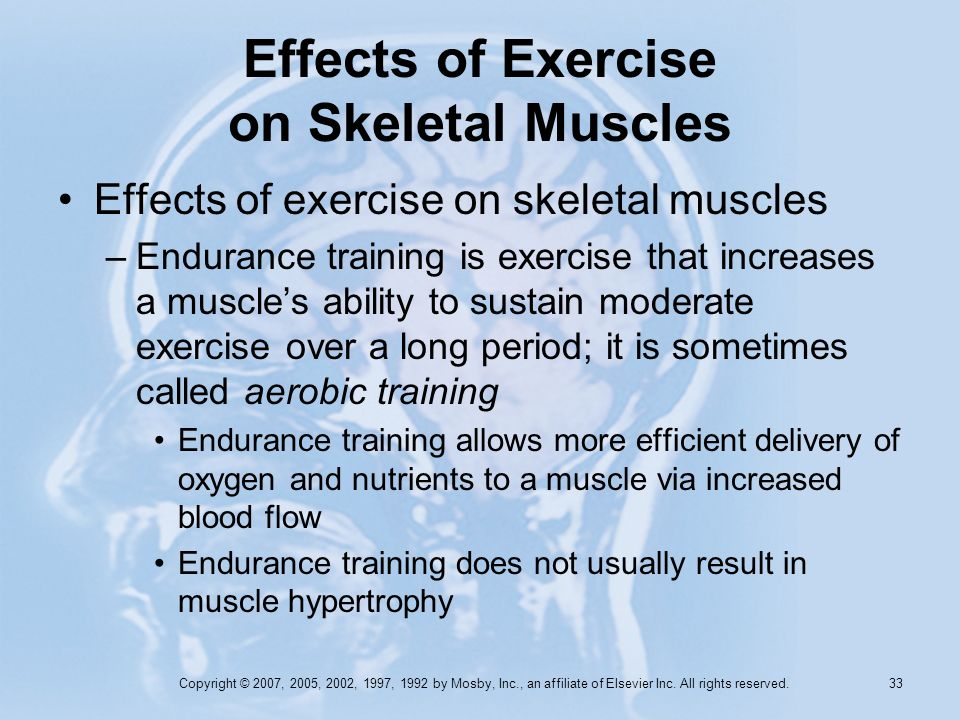 Copyright © 2007, 2005, 2002, 1997, 1992 by Mosby, Inc., an affiliate of Elsevier Inc. All rights reserved. 32 Effects of Exercise on Skeletal Muscles