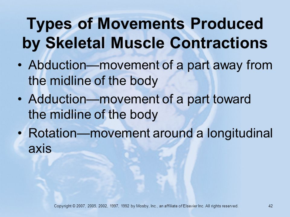 Copyright © 2007, 2005, 2002, 1997, 1992 by Mosby, Inc., an affiliate of Elsevier Inc. All rights reserved. 41 Types of Movements Produced by Skeletal