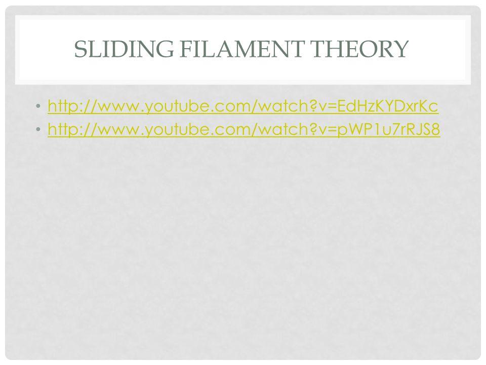 SLIDING FILAMENT THEORY http://www.youtube.com/watch?v=EdHzKYDxrKc http://www.youtube.com/watch?v=pWP1u7rRJS8