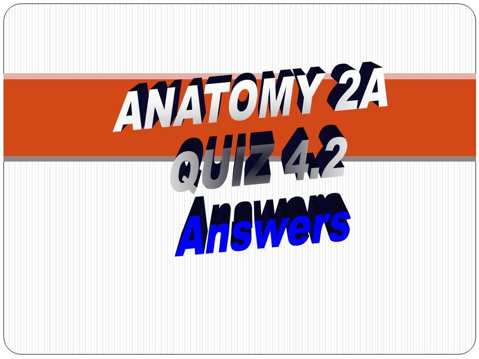 21.Name muscle # 21 a) Orbicularis oculi b) Orbicularis oris c) Buccinator d) Frontalis e) Zygomaticus major 21