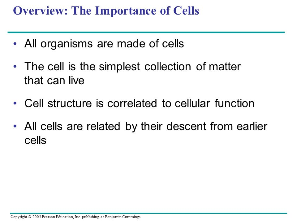 Copyright © 2005 Pearson Education, Inc. publishing as Benjamin Cummings Overview: The Importance of Cells All organisms are made of cells The cell is
