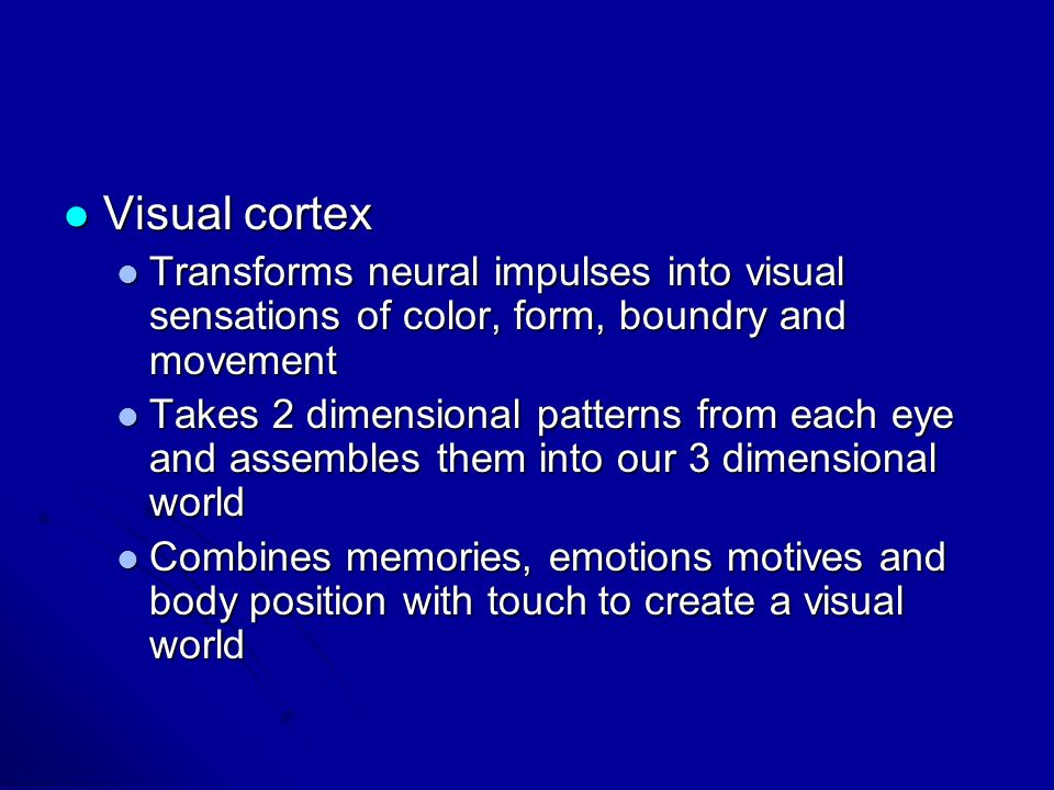 Visual cortex Visual cortex Transforms neural impulses into visual sensations of color, form, boundry and movement Transforms neural impulses into vis