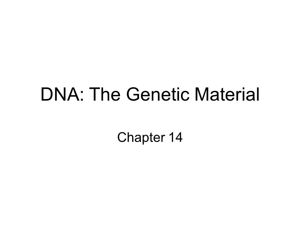 DNA: The Genetic Material Chapter 14
