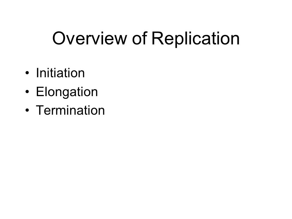 Overview of Replication Initiation Elongation Termination