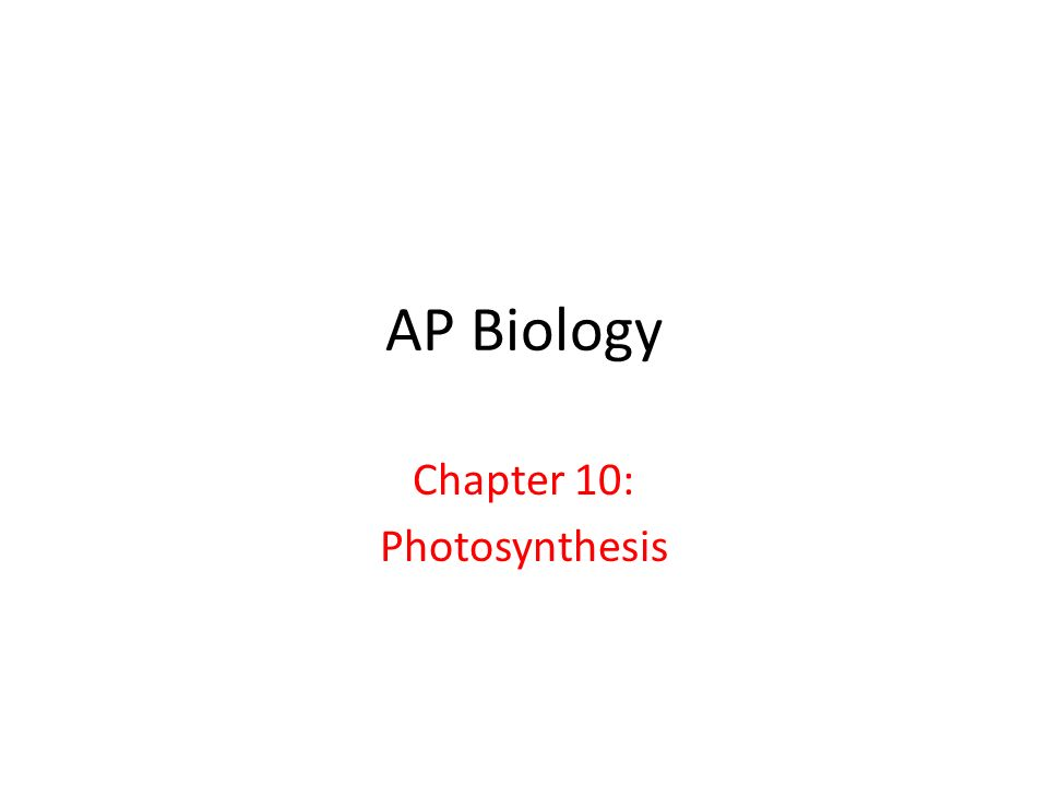 AP Biology Chapter 10: Photosynthesis