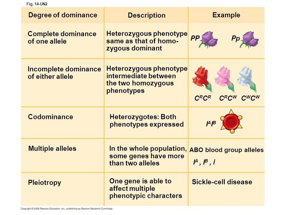 Fig. 14-UN2 Degree of dominance Complete dominance of one allele Incomplete dominance of either allele Codominance Description Heterozygous phenotype